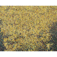 image of a painting titled untitled (yellow field)
